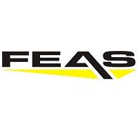 FEAS-Logo-200